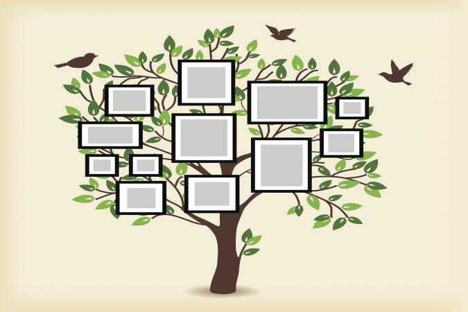 Family Tree Lesson Plans: Large tree templates for designing a